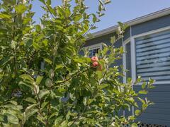cottage-rental_chalet-la-belle-epoque_121611