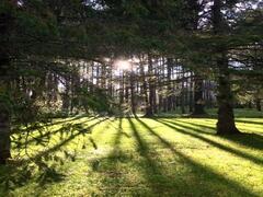 cottage-rental_carpe-diem-havre-de-paix_124642