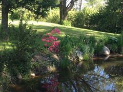 cottage-rental_carpe-diem-havre-de-paix_124701