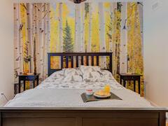 location-chalet_le-grizzly-spa-par-chalets-confort_125567