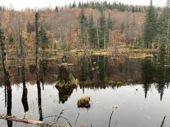cottage-rental_domaine-valcartier-sur-le-lac_127182