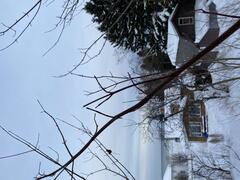 cottage-rental_l-shack-a-mes-mers_127928