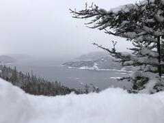 louer-chalet_Sacré-Coeur-Saguenay_129213