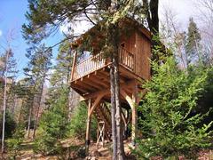 cottage-rental_cabane-dans-les-arbres-le-hibou_124195