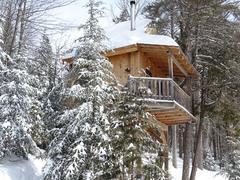 cottage-rental_cabane-dans-les-arbres-le-hibou_124203