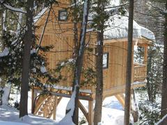 cottage-rental_cabane-dans-les-arbres-le-hibou_124206