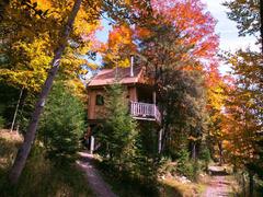 cottage-rental_cabane-dans-les-arbres-le-colibri_110449
