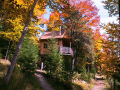 location-chalet_cabane-dans-les-arbres-le-colibri_110449