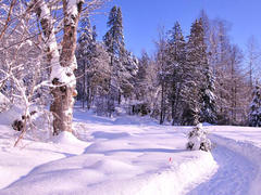 louer-chalet_Wentworth-Nord_110461