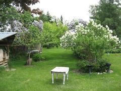 louer-chalet_Baie-St-Paul_13273