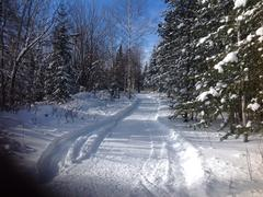 cottage-for-rent_eastern-townships_53666