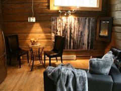 cottage-rental_les-chalets-enchantes-spa-prive_9828